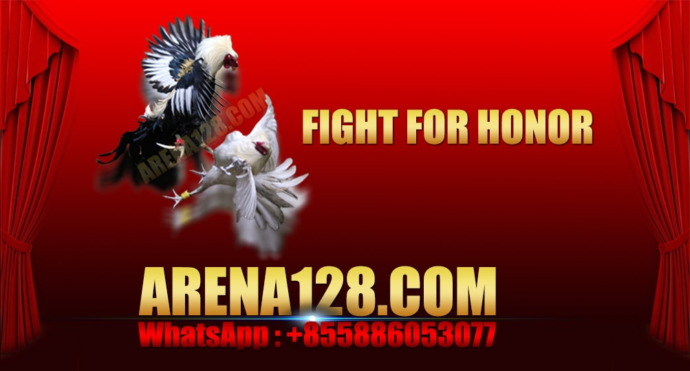 Arena128